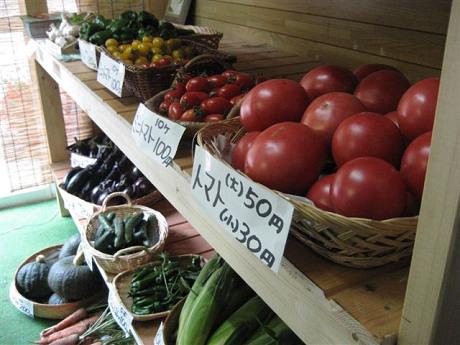 自家製野菜販売